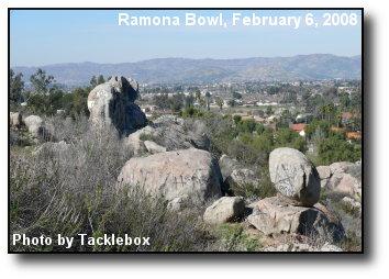 Bowl View