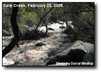 Cole Creek Rapids