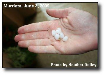 Marble Sized Hail