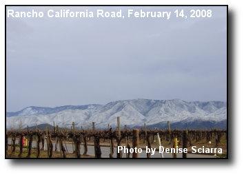 Palomar Range