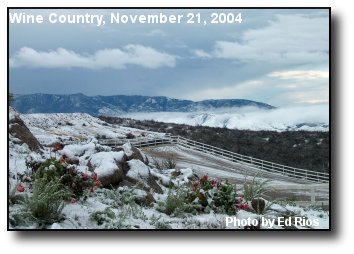 Wine Country Snow