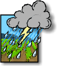 Thunderstorms, Partly sunny